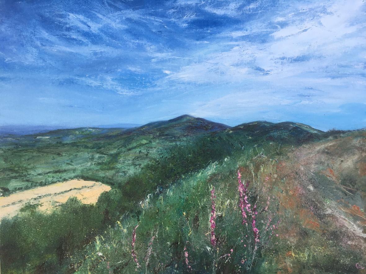Foxgloves British Camp Malvern hills oil painting by Anna Cumming