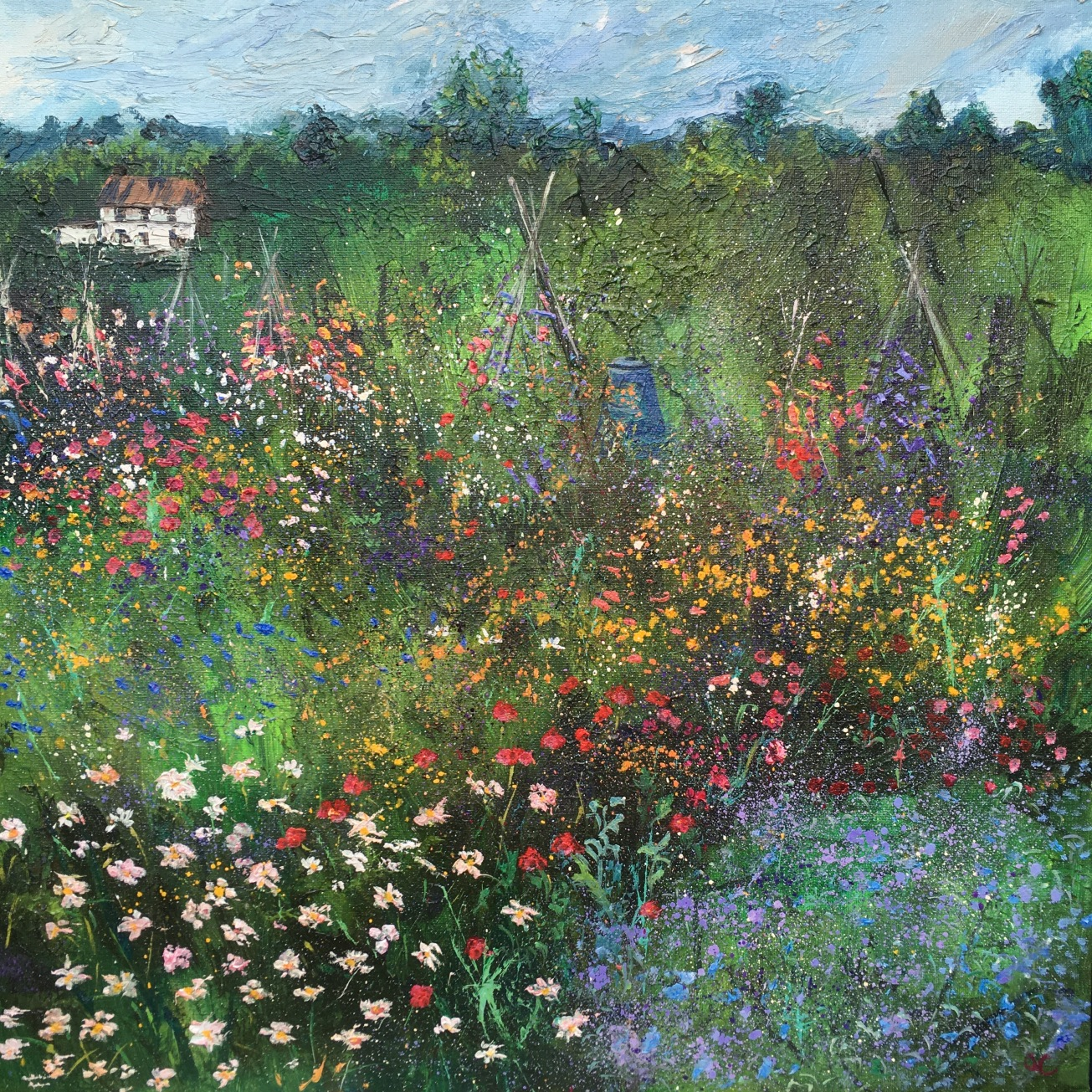 Summer, Colwall allotments